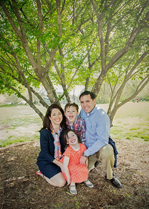 fam under the tree (1 of 1)